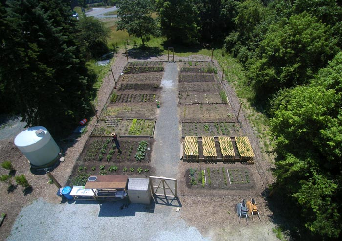 Rosslyn Farms Community Garden