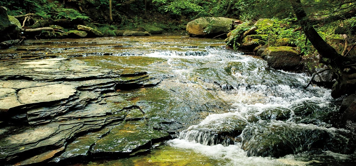 This stream runs along the Rock Furnace trail at Kiski Township's Roaring Run Recreation Area in Apollo, PA. It is part of a restored natural environment consisting of 650 acres of former coal mining land and an abandoned railroad.