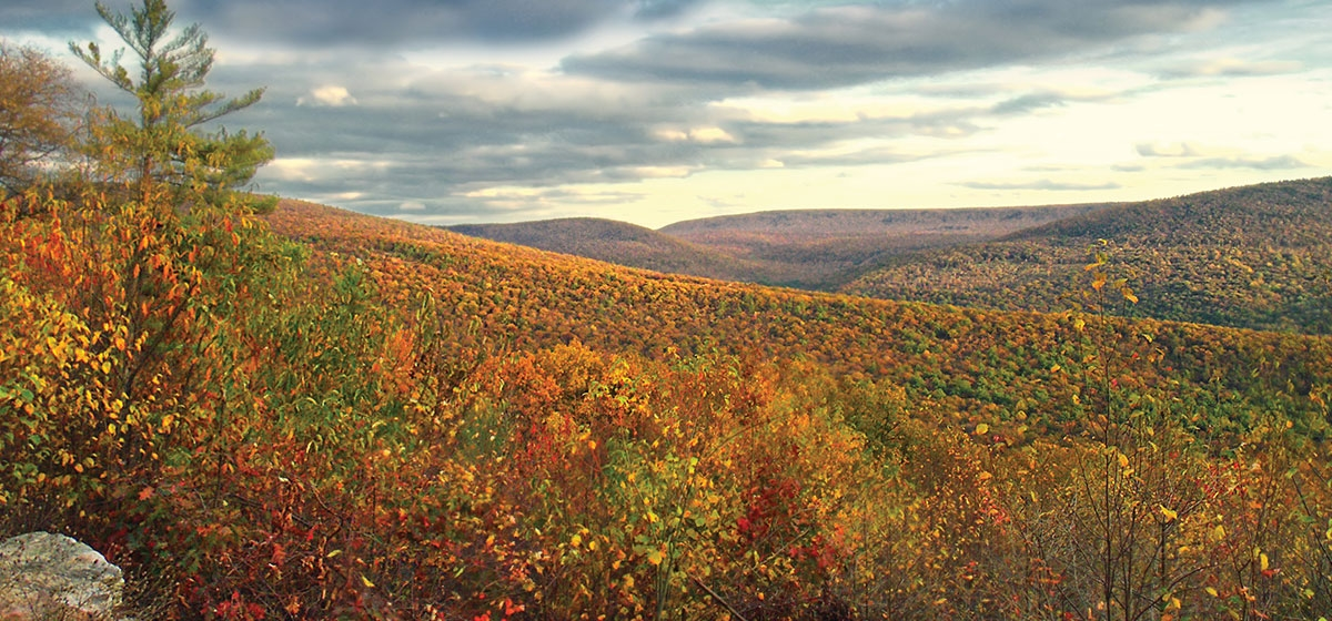 The colorful hills of Rothrock State Forest are a short drive from State College.