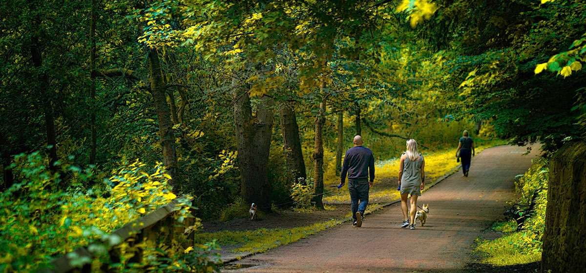 Can Walking Do Much to Affect Health and Fitness?