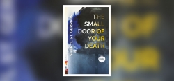 "Sheryl St. Germain Muses on her Son's Overdose in ""The Small Door of your Death"""