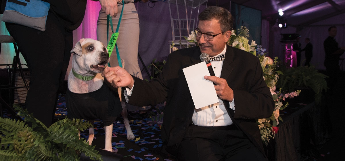 Animal Friends' adoptable dog, Titus, looks on from stage during Saturday night's live auction. Animal Friends' Black Tie & Tails, September 21–22, 2018.