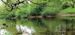 Laurel Hill Creek is considered a prime fishing destination by anglers.