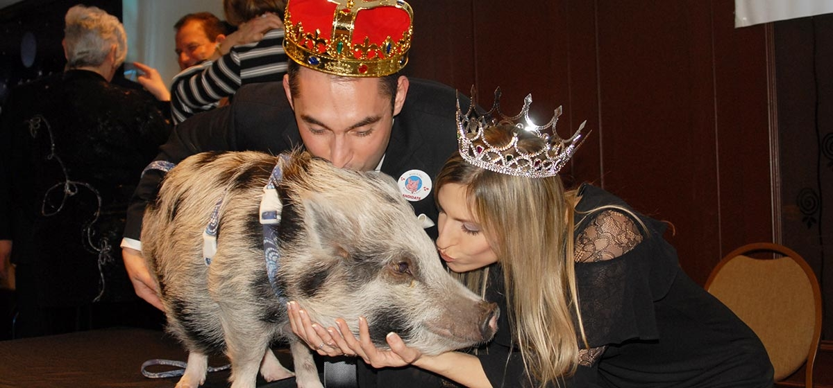 "Chris and Lauren Miladinovich, king and queen ""Kiss A Pig"" winners. Boys & Girls Clubs of Western PA's Fourth Annual Great Futures Gala. March 14, 2018."