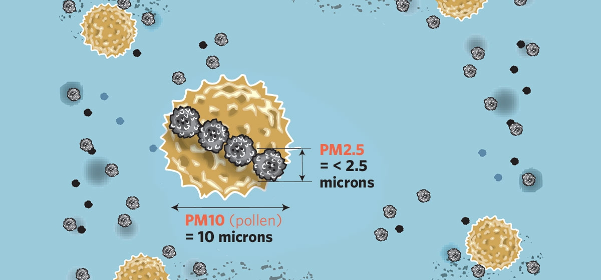 Smaller than dust and pollen, microscopic PM2.5 can lodge deep into lungs, causing serious health issues.