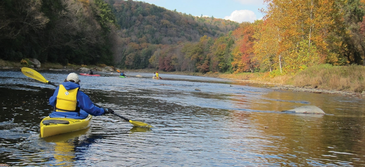 From its origin point in McKean County, the Clarion River flows nearly 100 miles to its confluence with the Allegheny River—providing a lush setting for kingfishers and kayakers alike.
