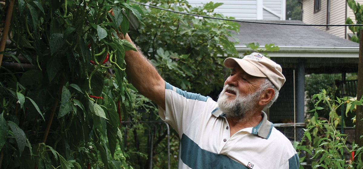 Marino Floro's bountiful garden in Sewickley boasts chickens, fig trees, pepper plants, and more—all carefully cultivated in the Italian tradition.