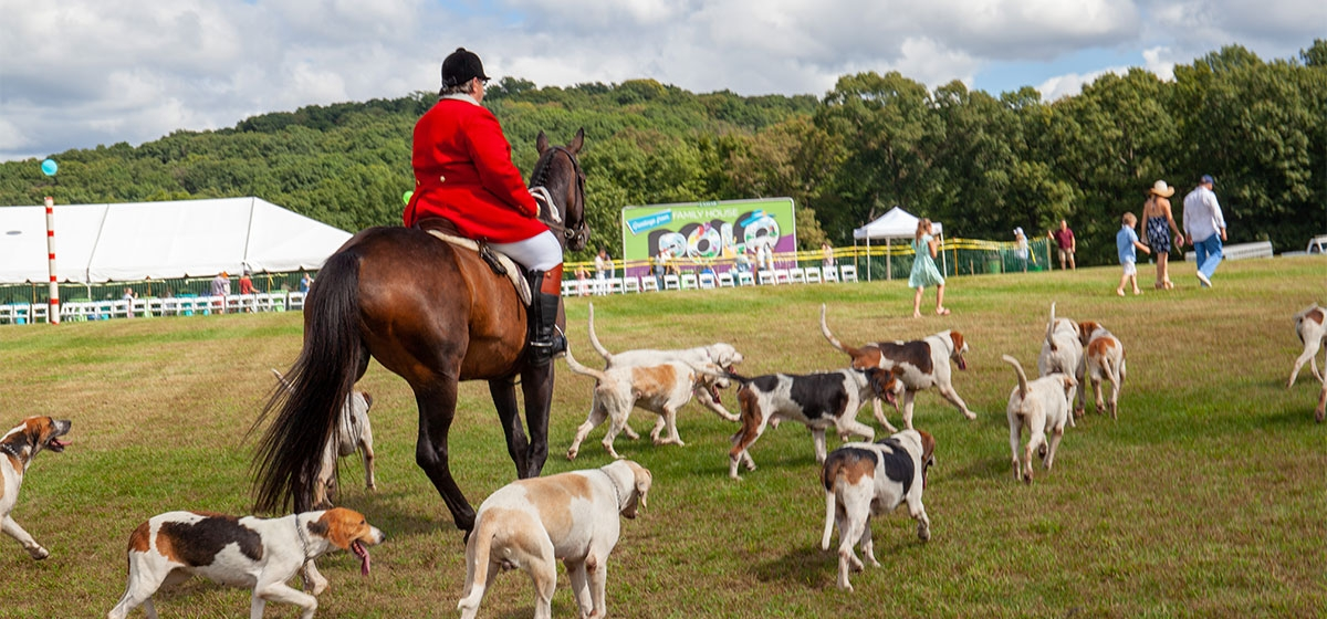 At UPMC Health Plan Half Time, guests were invited onto the field to meet the Saxonburg Hunt Hounds and stomp the divots. 35th Annual Family House Polo Match, Hartwood Acres. September 15, 2018.