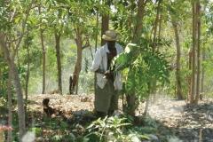 06_sprsum_haiti02