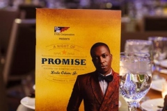 0338-The-Promise-Gala