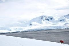 bti_17_03_28_hilliard_antarctica16