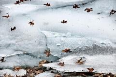 ice_22